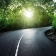 Empty road in jungle of Seychelles islands — Stock Photo