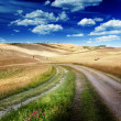 Road between the Fields of Tuscany, Italy - Stock fotografie