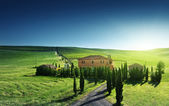 Tuscany landscape with typical farm house, Italty — Стоковое фото