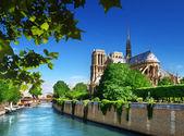 Notre-dame paris, frança — Fotografia Stock
