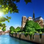 Notre-Dame paris, france — Photo