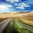 Road between the Fields of Tuscany, Italy — Stockfoto