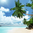 Stock Photo: beach on mahe island in seychelles