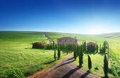 Paesaggio toscano con casa colonica tipica, italty — Foto Stock