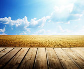 Wooden floor and summer wheat field — Stock Photo