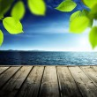 Pier, sea and green leaves — Stock Photo