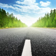 Stock Photo: Road in Russiforest