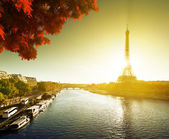 Seine in Paris with Eiffel tower in autumn — Stok fotoğraf