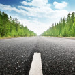 Stock Photo: Road in deep forest