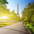 Stock Photo: Sunny morning and Eiffel Tower, Paris, France