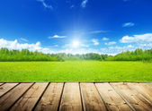 Spring field and wood floor — Stock Photo