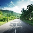 Empty road in jungle of Seychelles islands — Foto Stock