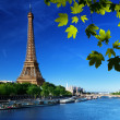 Stock Photo: Seine in Paris with Eiffel tower