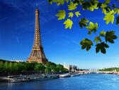 Seine en parís con la torre eiffel — Foto de Stock