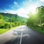 estrada vazia, na selva das Ilhas seychelles — Foto Stock #35562933
