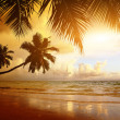 Sunset on the beach of caribbean sea — Stockfoto