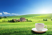 Cup coffee and tuscany landscape, Italy — Stock Photo