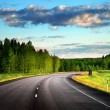 Asphalt road in forest — Stock Photo #36844771