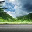 Asphalt road and tropical forest — Stock Photo #38225885