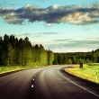 Stock Photo: Asphalt road in forest
