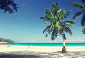 Anse Lazio beach Praslin island, Seychelles — Stock Photo