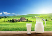 Milk and sunny spring field — Stock Photo