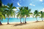 Beach of Catalina island in Dominican republic — Stock Photo
