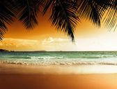 Zonsondergang op het strand van caribische zee — Stockfoto