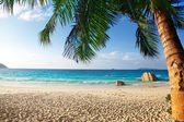 Anse Lazio beach, Praslin island, Seychelles — Stock Photo