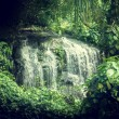 Waterfall in jungles of Seychelles, Mahe island — Stock Photo