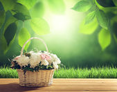 Flowers on table and spring forest — Stock Photo