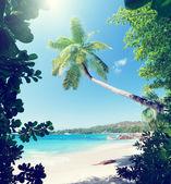 Anse Lazio beach on Praslin island in Seychelles  — Stock Photo