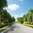 Road in tropical garden — Stock Photo #4492844