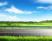 Road and spring grass — Foto Stock