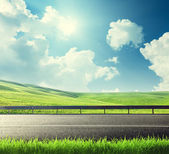Road and spring grass — Stock Photo