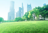 Park in  lujiazui financial center, Shanghai, China — Stock Photo