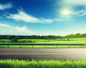 Road and spring grass — Stockfoto