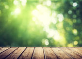 Wooden surface and sunny forest — Foto Stock