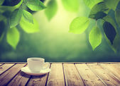 Cup coffee and sunny trees background — Foto de Stock