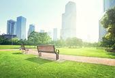 Bench in park, Shanghai, China — Stock Photo