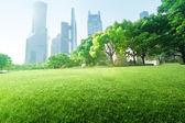 Park in  lujiazui financial center, Shanghai, China — Stock Photo