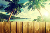 Fence on the beach — Stock Photo