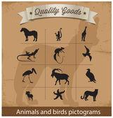Hayvanlar ve kuşlar piktogram sembol seti — Stok Vektör