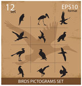 Set of silhouettes birds symbols — Vector de stock