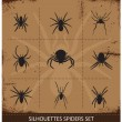 Stock Vector: Spiders silhouettes vector collection