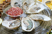 Fresh oysters on the ice plate — Stock Photo