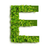 Letter E With Leaves — Stock Photo