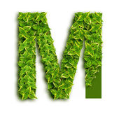 Letter M With Leaves — Stock Photo