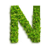 Letter N With Leaves — Stock Photo