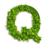 Letter Q, With Leaves — Stock Photo